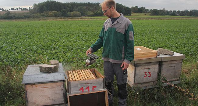 Der Imker Eike Töpperwien betreibt in Heiligendorf einen Bauernhof mit Rapshonig aus der eigenen Produktion.