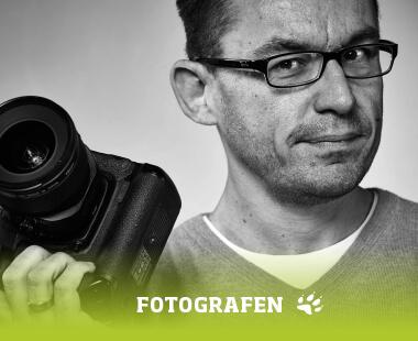 Fotografen in Wolfsburg
