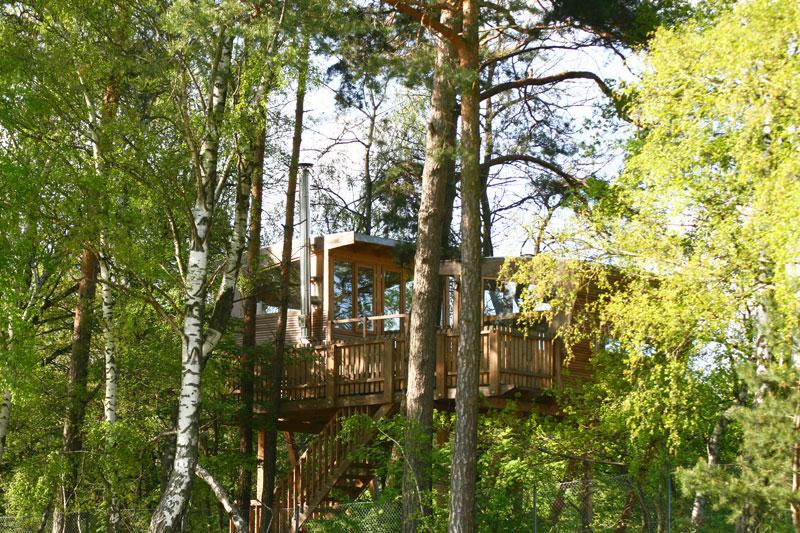 In sechs Metern Höhe befinden sich zwei Baumhäuser. / Foto: Stadt Wolfsburg