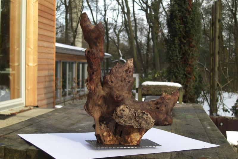 Der angrenzende Wald lässt spannende Kunstwerke entstehen / Foto: Dietlinde Zimbelmann-Kerbstadt